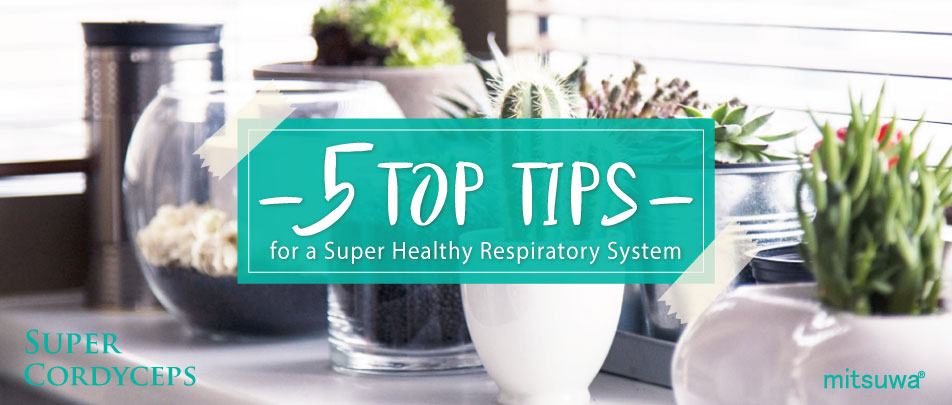 5 Top Tips for a Super Healthy Respiratory System
